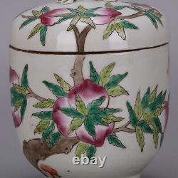5.9 Collect Chinese Qing Dynasty Porcelain Famille Rose Longevity Peach Lid Jar