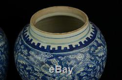 A pair Beautiful Chinese blue and white porcelain vase jar pot with cover