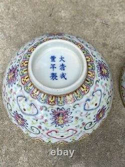 A pair of Chinese Famille Rose Porcelain Bowl with XIANFENG mark 1831-1861