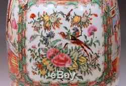 Antique Famille Rose Chinese Export Porcelain Vase Gilt Lion 19th C Large 24