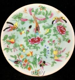Chinese Antique Famille Rose Porcelain Plate With Flowers and Butterflies