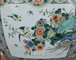 Chinese Porcelain Fish Bowl Jardiniere Decorated with Lion, Birds and Flowers