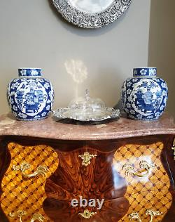 Pair of Chinese Blue and White Porcelain Ginger Jars Qing Dynasty