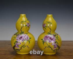 Pair of Chinese Famille Rose Enamel Double Gourd Porcelain Vase